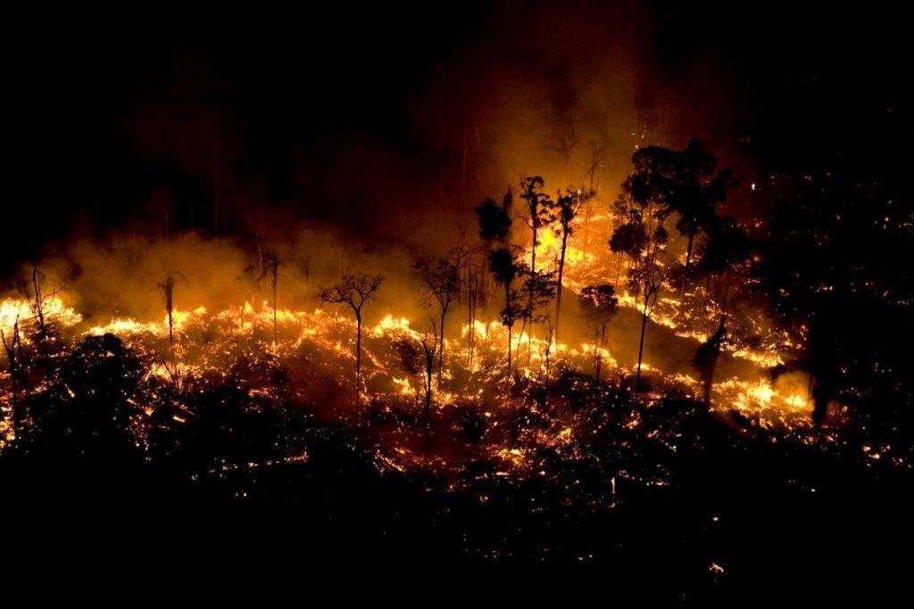 imagens vistas por satelite mais chocantes dos incendios na Amazonia capa
